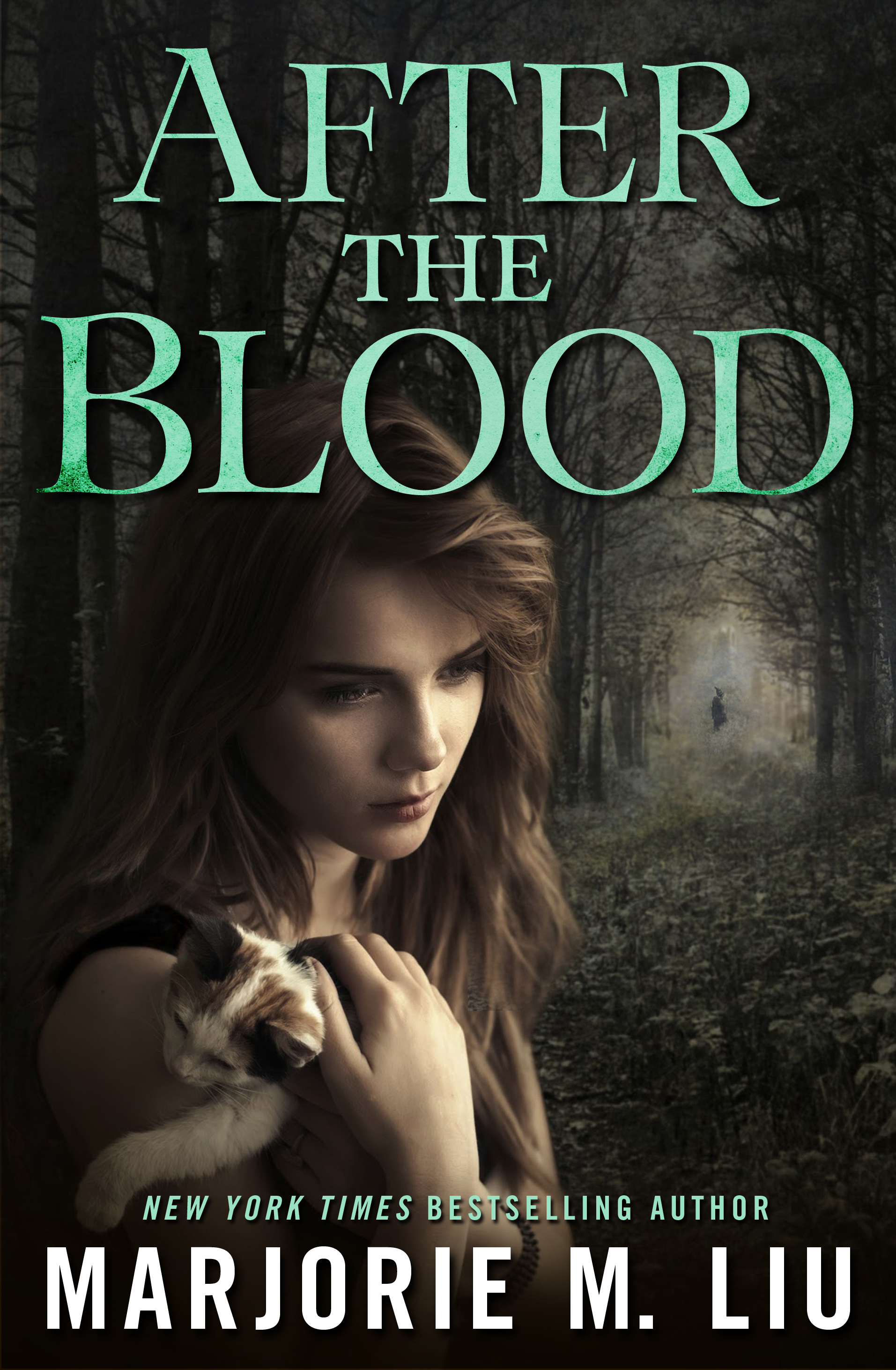 After the Blood by Marjorie Liu